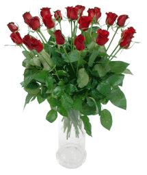 Kocaeli çiçekçiler  11 adet kimizi gülün ihtisami cam yada mika vazo modeli