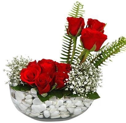 cam içerisinde 9 adet kirmizi gül  çiçek online çiçek siparişi