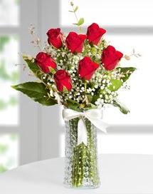 Cam vazoda 7 adet kırmızı gül  Kocaeli çiçek siparişi vermek