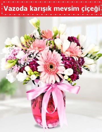 Vazoda karışık mevsim çiçeği  Kocaeli çiçek siparişi vermek