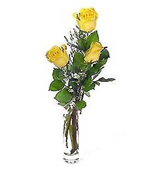 Kocaeli hediye sevgilime hediye çiçek  3 adet kalite cam yada mika vazo gül
