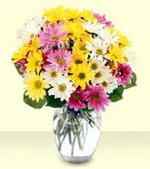 Kocaeli hediye sevgilime hediye çiçek  mevsim çiçekleri mika yada cam vazo