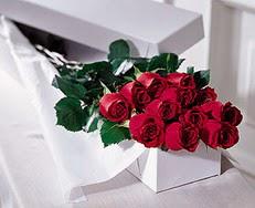 Kocaeli internetten çiçek siparişi  özel kutuda 12 adet gül