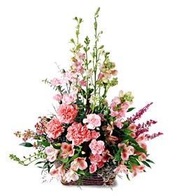 Kocaeli online çiçek gönderme sipariş  mevsim çiçeklerinden özel