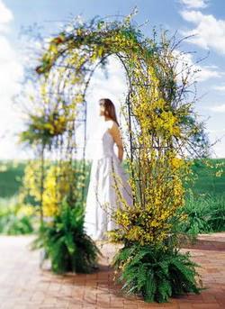 14 şubat sevgililer günü çiçek  güller ve mevsim çiçegi