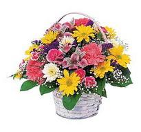 Kocaeli çiçek siparişi vermek  mevsim çiçekleri sepeti özel