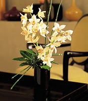 Kocaeli anneler günü çiçek yolla  cam yada mika vazo içerisinde dal orkide