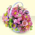 Kocaeli çiçek satışı  bir sepet dolusu kir çiçegi  Kocaeli çiçekçi mağazası