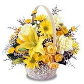 sadece sari çiçek sepeti   Kocaeli çiçekçi mağazası