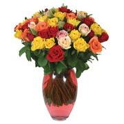 51 adet gül ve kaliteli vazo   Kocaeli çiçekçi mağazası