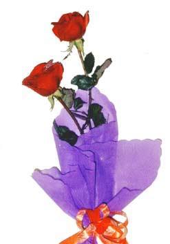 2  adet kirmizi gül buketi   Kocaeli çiçek siparişi vermek