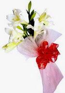 Kocaeli çiçek siparişi vermek  ince vazoda gerbera ve ayi