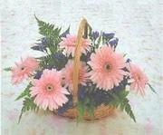 gerbera çiçeklerinde sepet   çiçek siparişi sitesi