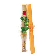 ince  kutuda  1  gül   çiçek siparişi sitesi