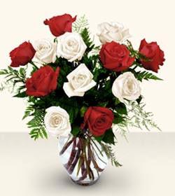 Kocaeli güvenli kaliteli hızlı çiçek  6 adet kirmizi 6 adet beyaz gül cam içerisinde