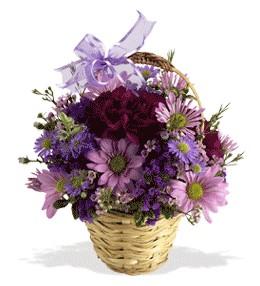 Kocaeli güvenli kaliteli hızlı çiçek  sepet içerisinde krizantem çiçekleri