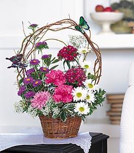 kaliteli taze ve ucuz çiçekler  sepet içerisinde karanfil gerbera ve kir çiçekleri