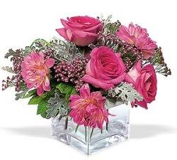 kaliteli taze ve ucuz çiçekler  cam içerisinde 5 gül 7 gerbera çiçegi