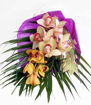 kaliteli taze ve ucuz çiçekler  1 adet dal orkide buket halinde sunulmakta