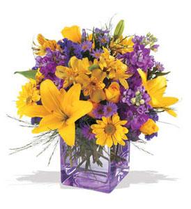 çiçek yolla  cam içerisinde kir çiçekleri demeti
