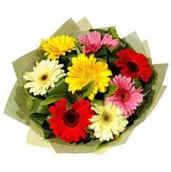 9 adet karisik gerbera demeti  çiçek yolla