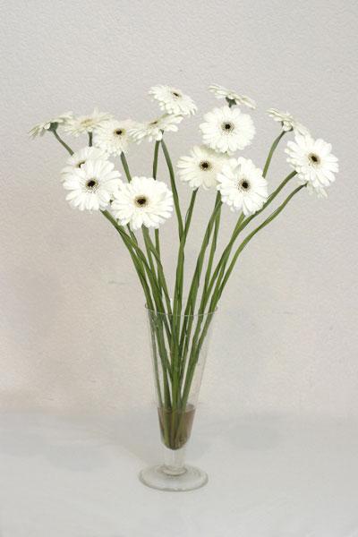 çiçek yolla  cam vazo içerisinde 17 adet sade gerbera