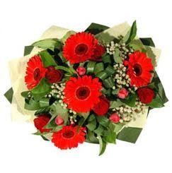 Kocaeli online çiçek gönderme sipariş   5 adet kirmizi gül 5 adet gerbera demeti