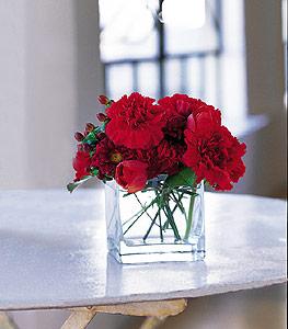 Kocaeli online çiçek gönderme sipariş  kirmizinin sihri cam içinde görsel sade çiçekler