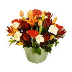 mevsim çiçeklerinden karma aranjman  Kocaeli ucuz çiçek gönder