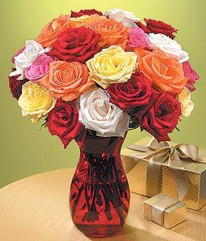 Kocaeli online çiçekçi , çiçek siparişi  13 adet renkli gül
