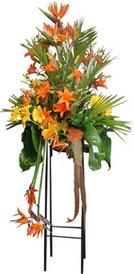 Kocaeli uluslararası çiçek gönderme  perförje tanzimi dügün nikah ve açilislara