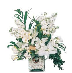 Kocaeli hediye sevgilime hediye çiçek  sadece beyazlardan olusmus mevsim cam yada mika tanzim