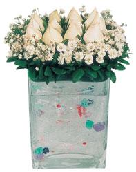 Kocaeli cicekciler , cicek siparisi  7 adet beyaz gül cam yada mika vazo tanzim