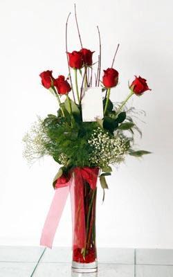 kaliteli taze ve ucuz çiçekler  6 adet kirmizi gül ve cam yada mika vazo
