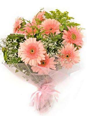 Kocaeli internetten çiçek siparişi  11 adet gerbera çiçegi buketi