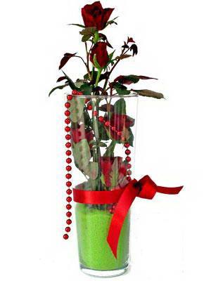 Kocaeli çiçek servisi , çiçekçi adresleri  Cam yada mika içerisinde 9 adet kirmizi gül - sevdiklerinize özel