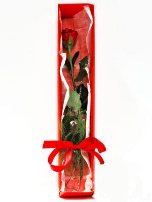 Kocaeli çiçek satışı  1 adet kutuda gül