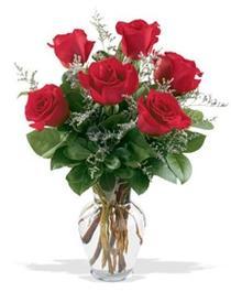 Kocaeli çiçekçi mağazası  7 adet kirmizi gül cam yada mika vazoda sevenlere