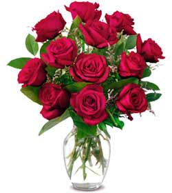 Kocaeli çiçek servisi , çiçekçi adresleri  1 düzine kirmizi gül sevenlere özel vazo gülleri