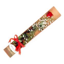 Kocaeli çiçek siparişi vermek  Kutuda tek 1 adet kirmizi gül çiçegi