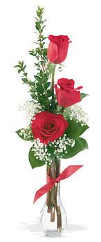 kaliteli taze ve ucuz çiçekler  mika yada cam vazoda 3 adet kirmizi gül