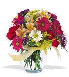 Kocaeli çiçek siparişi vermek  cam yada mika vazo içerisinde karisik kir çiçekleri