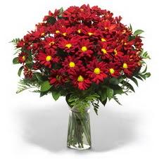 çiçek siparişi sitesi  Kir çiçekleri cam yada mika vazo içinde
