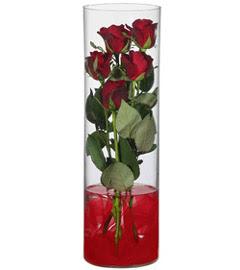 cam içerisinde 7 adet kirmizi gül  Kocaeli anneler günü çiçek yolla
