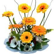 camda gerbera ve mis kokulu kir çiçekleri  Kocaeli çiçekçiler