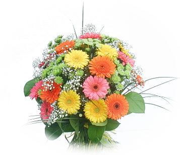13 adet gerbera çiçegi buketi  Kocaeli çiçek servisi , çiçekçi adresleri