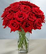 Kocaeli uluslararası çiçek gönderme  Sevdiklerinize özel ürün 12 adet cam içerisinde kirmizi gül  Kocaeli cicek , cicekci