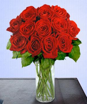 Anneme 12 adet cam içerisinde kirmizi gül  Kocaeli uluslararası çiçek gönderme