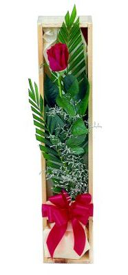 1 adet kutuda kirmizi gül  Kocaeli çiçekçi mağazası