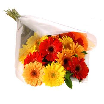 Karisik renklerde gerbera buketi  kaliteli taze ve ucuz çiçekler